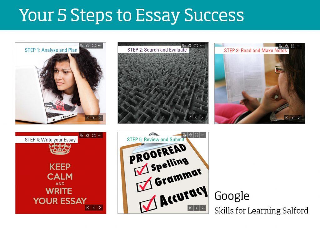 essay sucess