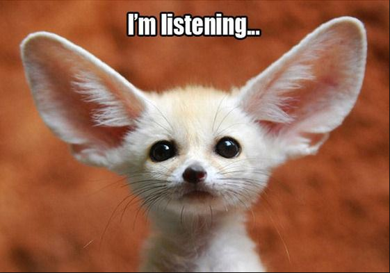 "Image of dog with large ears with the caption ""i am listening"""