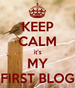 keep-calm-it-s-my-first-blog-2