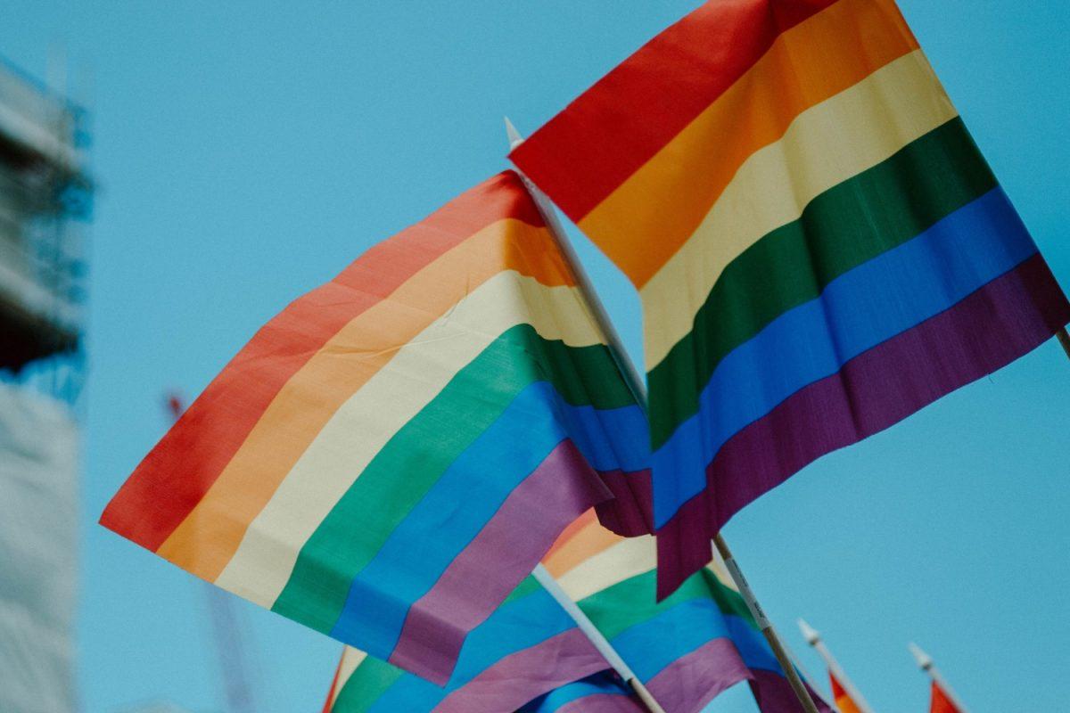 LGBTQ+ flags