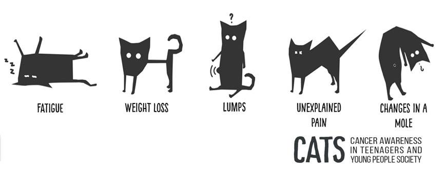 CATS 5 Signs