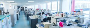 Why a research-based placement is an opportunity not to be missed