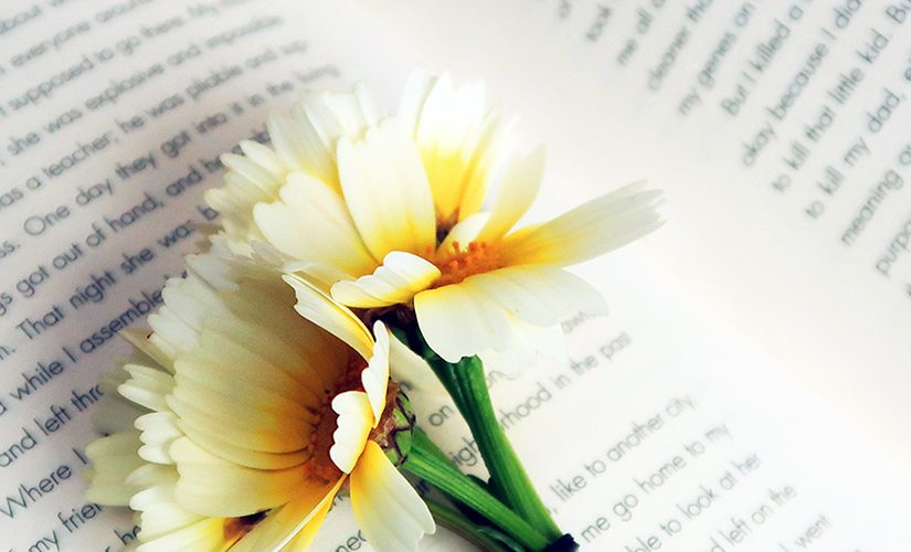 flowers laid on top of an open book