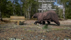 A Brown Bear in Virtual Chernobyl